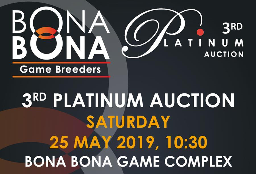 Bona Bona Auction Banner cropped