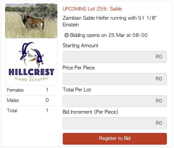 Bona Bona Hillcrest Lot 259 Timed Auction Zambian Sable Heifer running with 51125 Einstein 1 1 Hillcrest Pink HG44