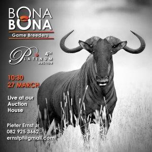 Bona Bona 2021 auction
